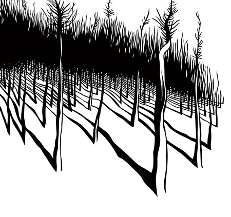 Illustration for Forest, black and white vector illustration. - Royalty Free Image