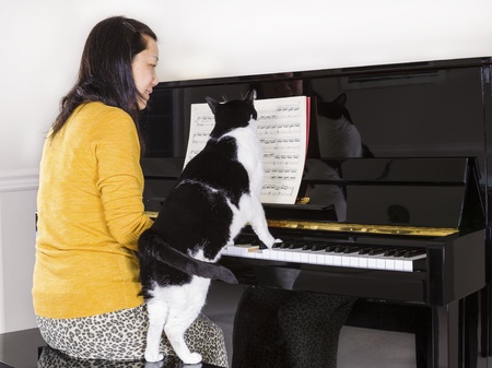 Photo of mature woman playing piano with her family pet cat with his paws on the keyboard whiles she is playing