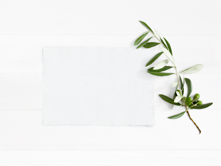 Photo pour Styled stock photo. Feminine wedding desktop mockup with green olive branch and white empty paper card. Foliage composition on old white wooden background. Top view. Flat lay picture. - image libre de droit