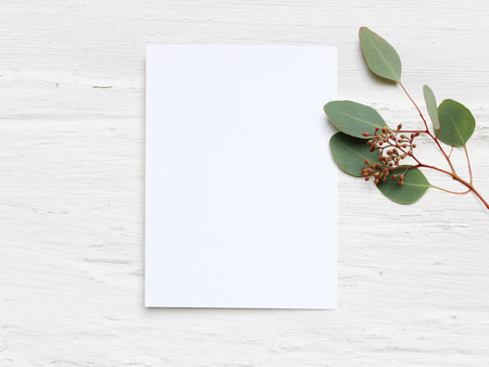 Photo for Feminine wedding desktop mock-up with blank paper card and Eucalyptus populus branch on white shabby table background. Empty space. Styled stock photo, web banner. Flat lay, top view. - Royalty Free Image