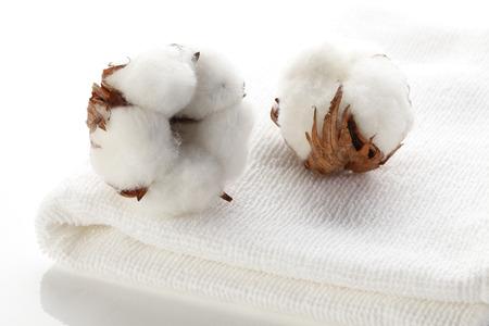 Foto de Cotton flower on cotton towels - Imagen libre de derechos