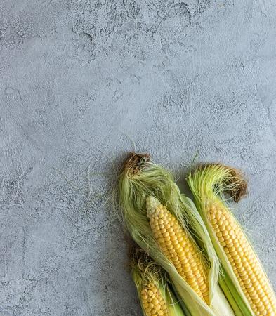 Photo pour corn on cob, in coating, topview, copyspace - image libre de droit