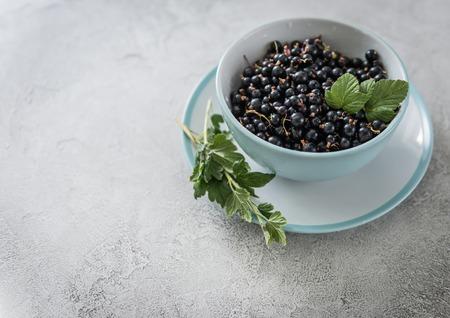 Photo pour ripe black berries, rustic dishware, copyspace - image libre de droit