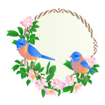 Illustration for Floral round  frame with wild Roses  and cute small singings birds bluebirds vintage  festive  background vector illustration editable hand draw - Royalty Free Image