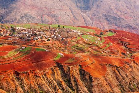 Foto de Fantastic landscape, colorful scenic old village of Red Land at sunrise, red mountain backgrounds. The sun shines down around terraced wheat fields. Dongchuan, China. Spring season. Bright sunlight. - Imagen libre de derechos