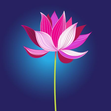 Illustration for Beautiful pink vector lotus flower - Royalty Free Image