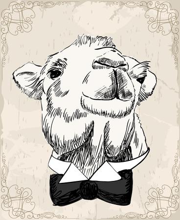 Ilustración de sketch of camel - Imagen libre de derechos