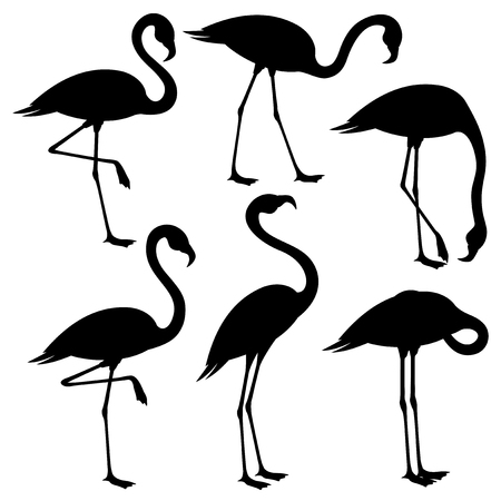 Ilustración de Set of black flamingos on white background. - Imagen libre de derechos