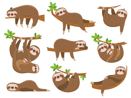 Ilustración de Cartoon sloths family. Adorable sloth sleepy animal at jungle rainforest different lazy sleeping. Funny brown cute animals happy sleep on tropical forest trees vector icons isolated set - Imagen libre de derechos