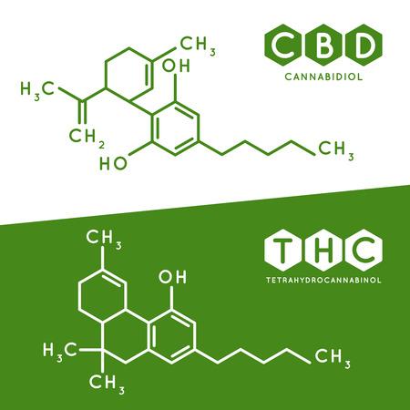 Illustration pour Thc and cbd formula. Cannabidiol and tetrahydrocannabinol molecule structure compound. Medical marijuana molecules, cannabidiol biochemistry formula. Chemistry addiction vector illustration - image libre de droit