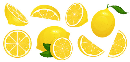 Ilustración de Lemon slices. Fresh citrus, half sliced lemons and chopped lemon. Cut lemons fruit slice and zest for lemonade juice or vitamin c. Isolated cartoon vector illustration icons set - Imagen libre de derechos