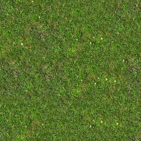 Foto de Green Grass. Seamless Tileable Texture. - Imagen libre de derechos