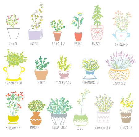 Illustration pour Herbs and spices set in pots with flowers illustration - image libre de droit