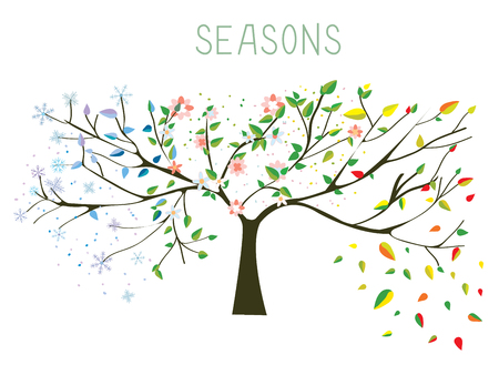 Illustration pour Tree during four seasons concept - vector illustration - image libre de droit