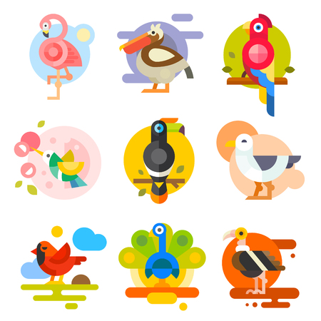 Illustration pour Different birds: pelican, flamingo, toucan, parrot, hummingbird, eagle, seagull, peacock. Vector flat Illustrations - image libre de droit