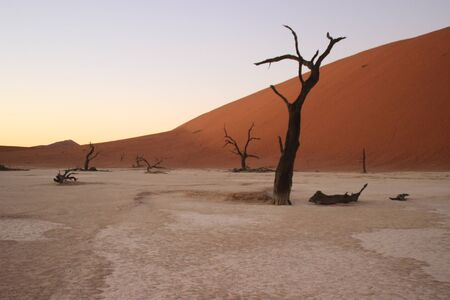 Photo for Dead Vlei in the southern part of the Namib Desert, in the Namib-Nacluft National Park in Namibia. Sossusvlei - Royalty Free Image