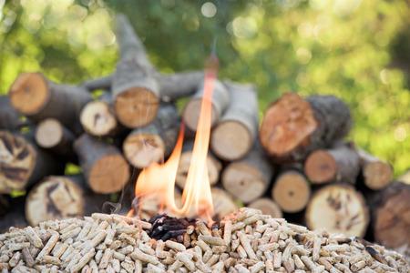Foto de Pine pellets and file of woods in flames - Imagen libre de derechos