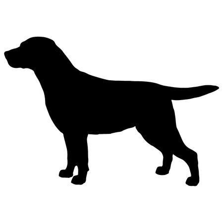 Ilustración de Black and white silhouette of dog labrador - Imagen libre de derechos