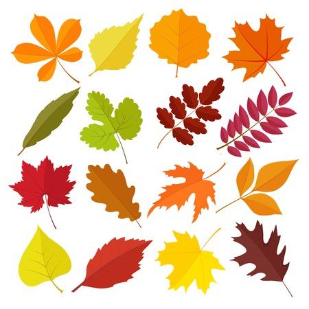 Illustration pour set of autumn leaves - image libre de droit