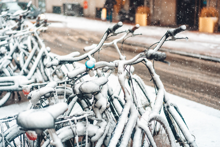Photo for First snow of the year - Royalty Free Image