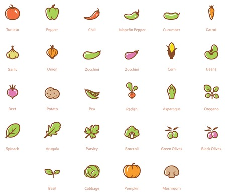 Photo for Set of the vegetables related icon - Royalty Free Image