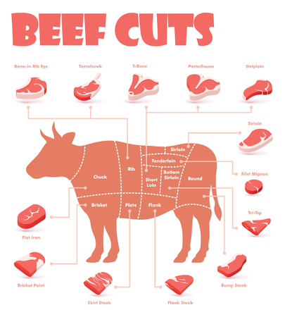 Ilustración de Vector beef cuts chart and pieces of beef, used for cooking steak and roast - t-bone, rib eye, porterhouse, tomahawk, filet mignon, striploin, sirloin, tri-tip and other popular steak cuts - Imagen libre de derechos