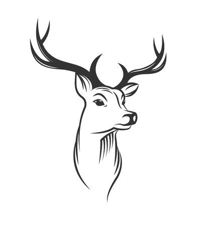 Illustration pour Deer head on white background - image libre de droit