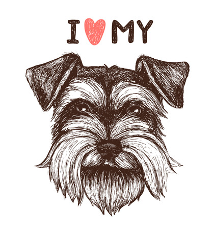 Ilustración de I love my schnauzer. Vector sketch illustration with hand drawn dog portrait. Can be used for greeting card, t-shirt design, print or poster - Imagen libre de derechos