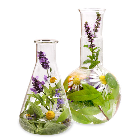 Photo for Flasks with medicinal herbs - Royalty Free Image
