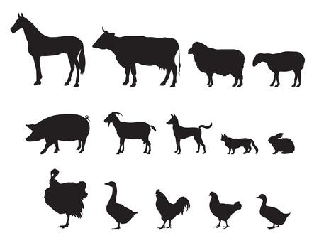 Illustration for Farm animals vector set  Livestock   - Royalty Free Image