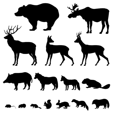 Animals living in europien forest  Vector set of silhouette isolated on white background