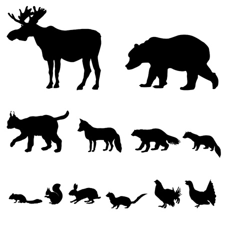 Animals living in taiga  Vector set of silhouette isolated on white background