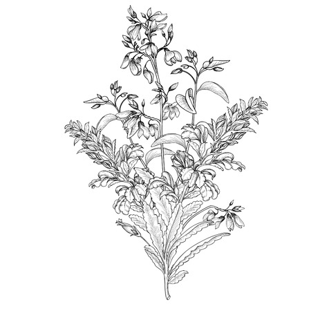 Illustration pour Floral background. Flower bouquet vintage cover. Flourish card with copy space. Posy isolated with exotic flowers. - image libre de droit