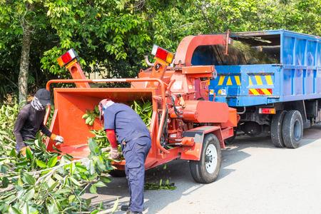 Foto de Workers loading tree branches into the wood chipper machine for shredding - Imagen libre de derechos