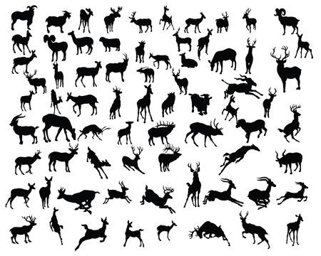 Ilustración de deers collection silhouettes - vector - Imagen libre de derechos