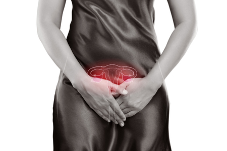 Photo pour Woman With Hands Holding Her Crotch, Uterus Illustration, Human Reproductive System, Female Anatomy Concept. - image libre de droit