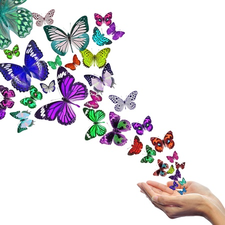 Photo for Hands releasing butterflies - Royalty Free Image