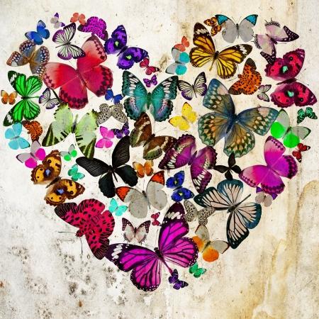 Heart of the butterflies