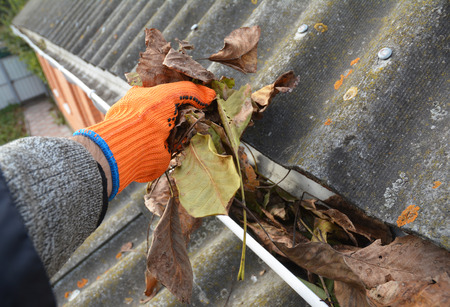 Photo pour Rain Gutter Cleaning from Leaves in Autumn - image libre de droit