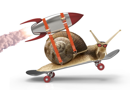 Photo pour snail in a hurry - image libre de droit