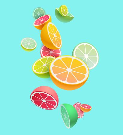 Ilustración de Citrus fruits composition. Vector styling. - Imagen libre de derechos