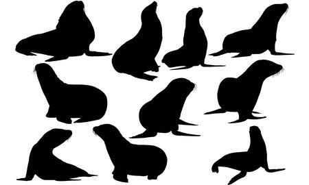 Illustrazione per Sea lion silhouette illustration - Immagini Royalty Free