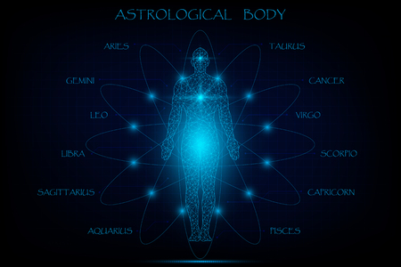 Illustration pour Astrological body, twelve zodiac background, vector illustration. - image libre de droit