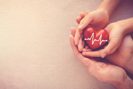 Foto de adult and child hands holding red heart with cardiogram, health care love and family concept - Imagen libre de derechos