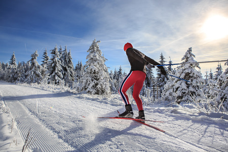 Photo pour A man cross-country skiing on the forest trail - image libre de droit