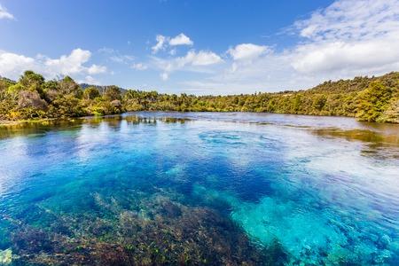 Foto de Pupu Spring/te waikoropupu springs in New Zealand - Imagen libre de derechos