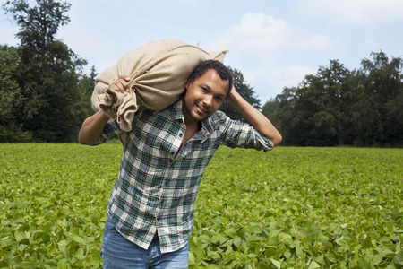 Photo for Farmer at carrying plantation harvest - Royalty Free Image