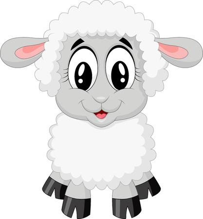 Photo pour Cute sheep cartoon  - image libre de droit