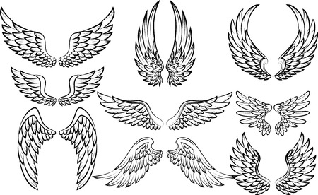 Illustration for Cartoon wings collection set - Royalty Free Image