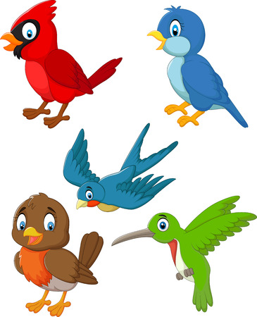 Cartoon birds collection set